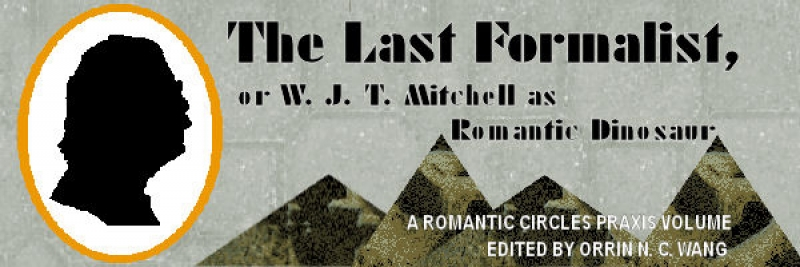 The Last Formalist, or W.J.T. Mitchell as Romantic Dinosaur, Edited by Orrin N.C. Wang