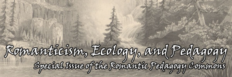 Romanticism, Ecology and Pedagogy