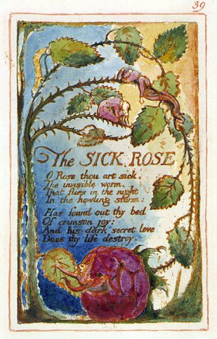 william blake compare infant joy The nook book (ebook) of the songs of innocence by william blake,  store kids' books compare our nooks  his joy to all he becomes an infant.