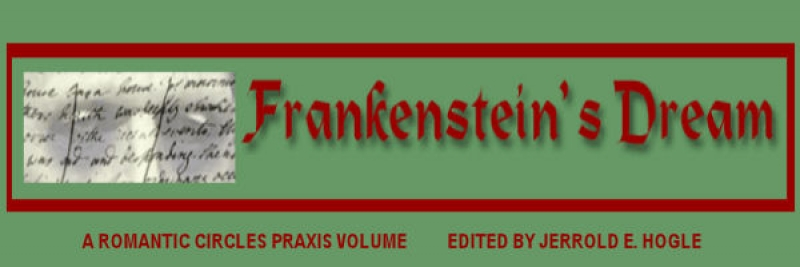 frankenstein and the romantic era essay Romantic writer mary shelley's novel frankenstein conforms to these conventional the period was a rejection of essays related to gothicism in frankenstein 1.
